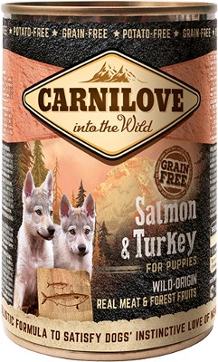 Salmon & Turkey for puppies can